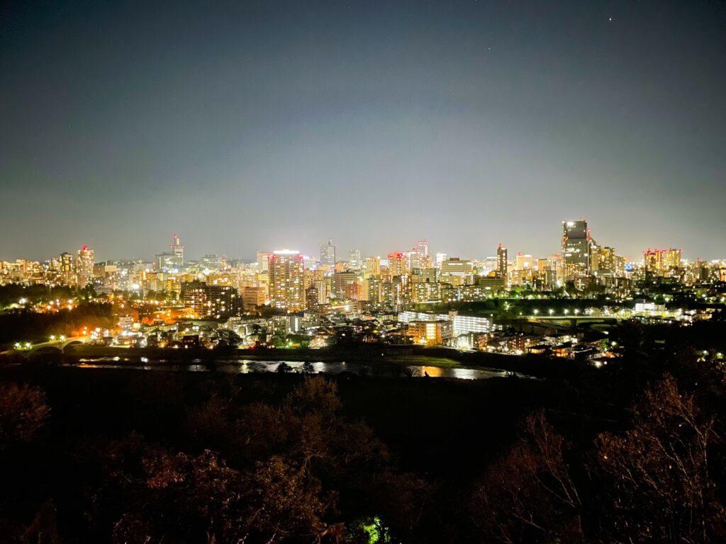 仙台城跡,夜景,インスタ映え