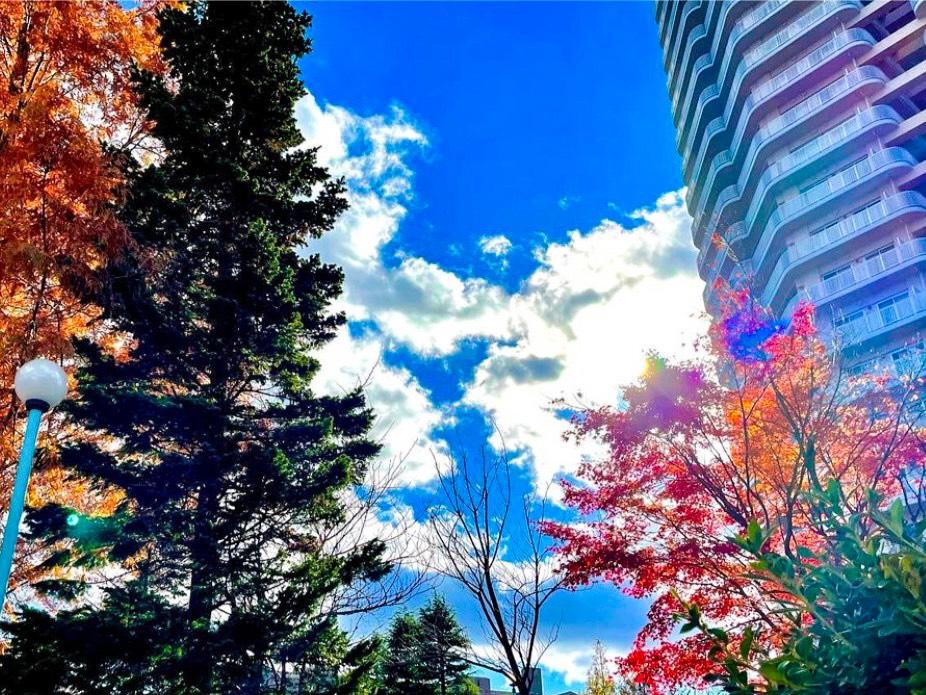 仙台駅まで車で10分のマンションパークタワー台原